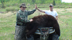 Alberta Bear Bow Hunting
