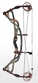Hoyt Compound bows Carbon Element