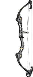 Mathews Compound Bows 'Conquest Prestige'