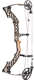 Mathews Compound Bows 'Jewel'