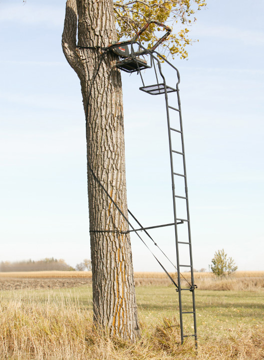 Big Game Tree Stands For Hunting